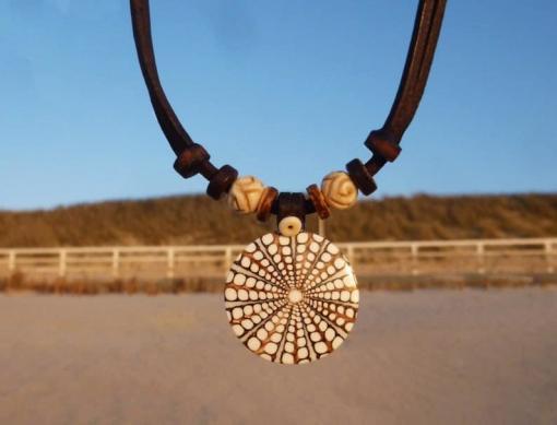 Muschelkette Roxy Muschel Halskette